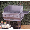 Outdoor Gas Grill - 30 Inches Wide, 80,000 BTU, 4 Burners