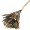"Carlisle 4574300 Feather Duster 24"" , DZ of 1/DZ"