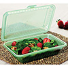 "Eco-Takeouts Food Container - Half-Size Single Compartment, 9""Wx6""Dx2-1/2""H"