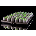 Hollowick EVOX48-CL Evolution 48 Candles( 4 Tray/Candles/Power)